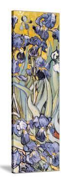 Iris Garden (detail) by Vincent van Gogh