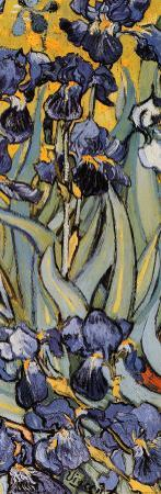 Irises, Saint-Remy, c.1889 (detail) by Vincent van Gogh