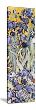 Irises, Saint-Remy, c.1889 (detail) by Vincent van Gogh