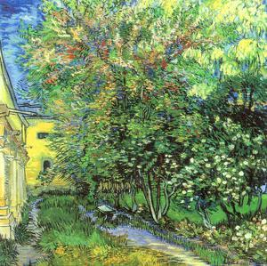 Jardin de l'hospice Saint-Paul by Vincent van Gogh