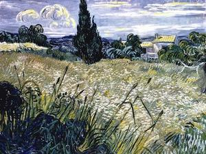 Landscape with Green Corn by Vincent van Gogh
