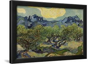 Vincent Van Gogh (Landscape with olive trees) Art Poster Print