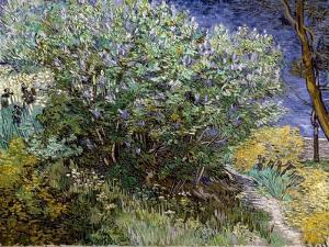 Le buisson de lilas by Vincent van Gogh