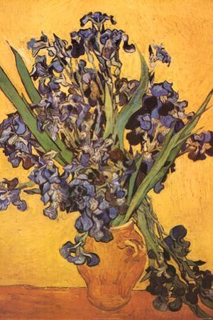 Vincent Van Gogh Les Iris Art Print Poster