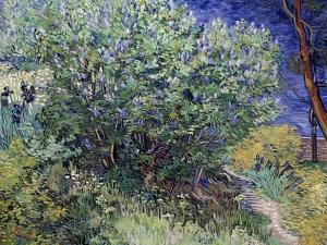 Lilac Bush, 1889 by Vincent van Gogh