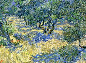 Olive Orchard, c.1889 by Vincent van Gogh