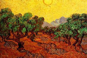 Vincent van Gogh Olive Trees with Yellow Sky and Sun