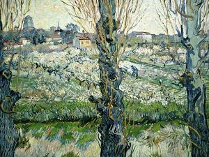 Orchard in Blossom with a View of Arles, 1889 by Vincent van Gogh