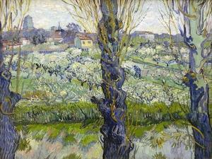Orchard in Blossom with View of Arles, 1889 by Vincent van Gogh