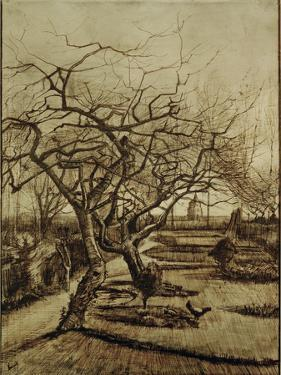 Parsonage Garden in Nuenen, March 1884 by Vincent van Gogh