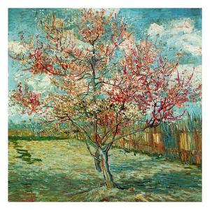 Pêcher En Fleurs (Souvenir De Mauve) by Vincent van Gogh
