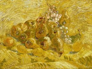 Quinces, Lemons, Pears and Grapes by Vincent van Gogh