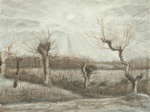 Tetards (Pollards), 1884 by Vincent van Gogh