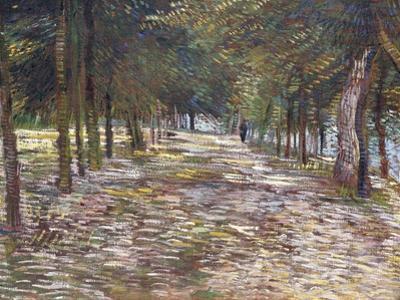 The Avenue at the Park of Voyer-D'Argenson at Asnieres, 1887 by Vincent van Gogh