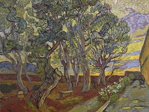 The Garden of Saint Paul's Hospital, 1889 by Vincent van Gogh