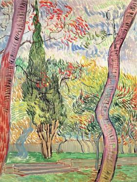 The Garden of St. Paul's Hospital, St. Remy, October 1889 by Vincent van Gogh