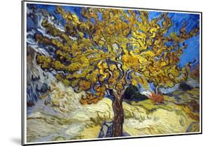 Vincent Van Gogh The Mulberry Tree Art Print Poster