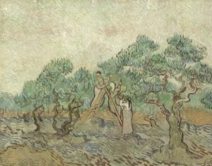 The Olive Orchard, 1889 by Vincent van Gogh