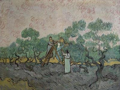 The Olive Pickers, Saint-Remy, c.1889 by Vincent van Gogh