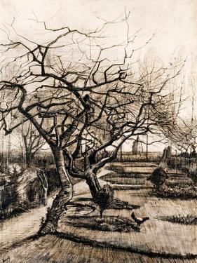 The Parsonage Garden at Nuenen in Winter by Vincent van Gogh