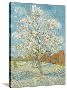 The Pink Peach Tree by Vincent van Gogh