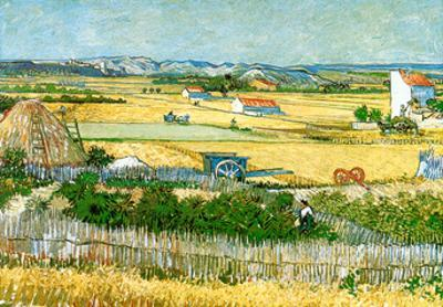 The Reaping at La Crau by Vincent van Gogh