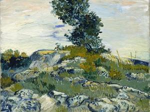 The Rocks, 1888 by Vincent van Gogh