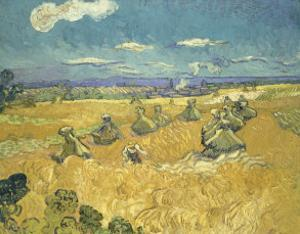 The Wheat Field, c.1888 by Vincent van Gogh