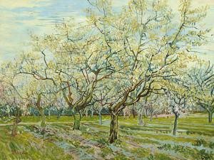 The White Orchard, 1888 by Vincent van Gogh