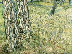 Tree Trunks in Grass, 1890 by Vincent van Gogh