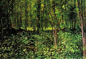 Vincent Van Gogh Trees and Undergrowth Forest Art Print Poster