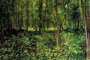 Vincent Van Gogh Trees and Undergrowth Forest Plastic Sign