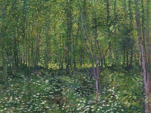 Trees and Underwood, c.1887 by Vincent van Gogh