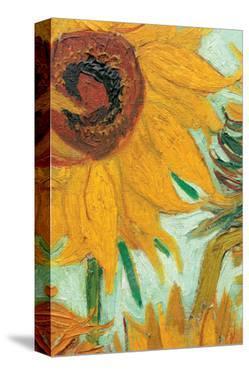 Twelve Sunflowers (detail) by Vincent van Gogh