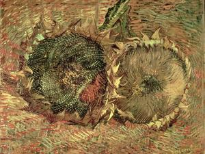 Two Cut Sunflowers, c.1887 by Vincent van Gogh