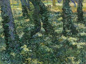Undergrowth, 1889 by Vincent van Gogh