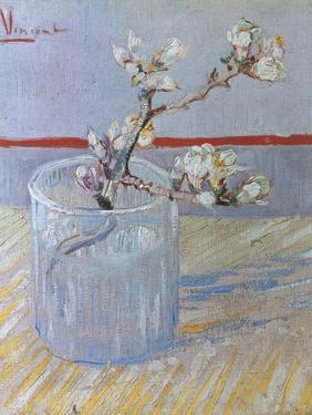 Van Gogh: Branch, 1888 by Vincent van Gogh