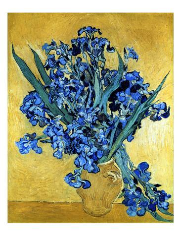 Vase Of Irises Against A Yellow Background C1890 Framed Canvas
