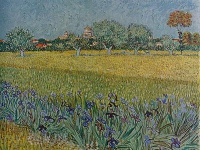 'View of Ales with Irises in Bloom', 1888 by Vincent van Gogh