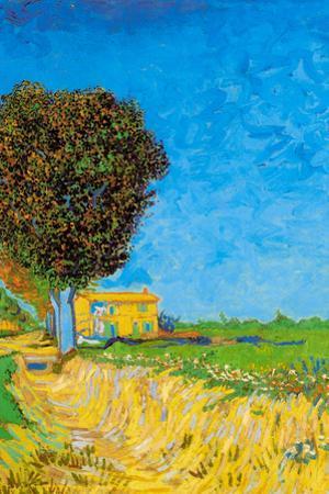 Vincent van Gogh A Lane near Arles by Vincent van Gogh