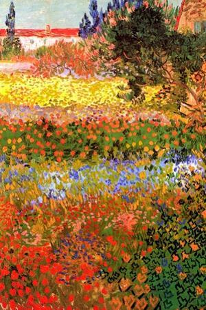 Vincent van Gogh Flowering Garden by Vincent van Gogh