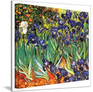 Vincent van Gogh 'Irises in the Garden' Wrapped Canvas Art by Vincent van Gogh