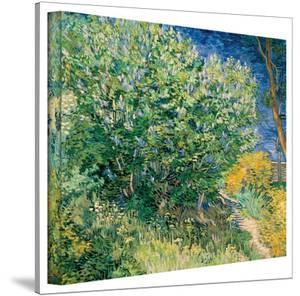 Vincent van Gogh 'Lilacs' Wrapped Canvas Art by Vincent van Gogh