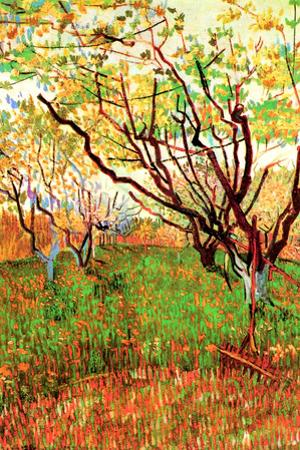 Vincent van Gogh Orchard in Blossom by Vincent van Gogh