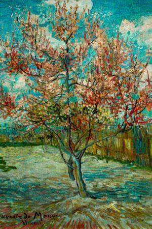 Vincent Van Gogh Pink Peach Trees Souvenir de Mauve Plastic Sign by Vincent van Gogh