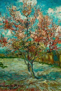 Vincent Van Gogh Pink Peach Trees Souvenir de Mauve by Vincent van Gogh