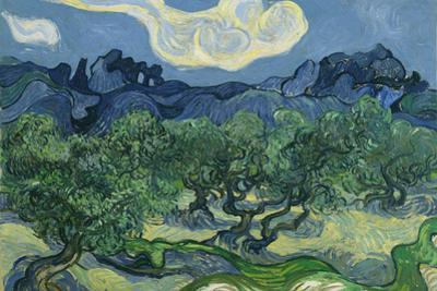 Vincent Van Gogh (The Olive Trees) Plastic Sign by Vincent van Gogh