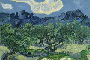 Vincent Van Gogh (The Olive Trees) Plastic Sign by Vincent van Gogh