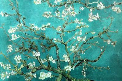 Vincent Van Gogh Turquoise Almond Branches in Bloom, San Remy Plastic Sign by Vincent van Gogh