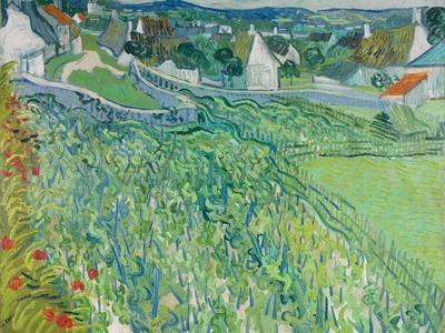 Vineyards at Auvers, June 1890